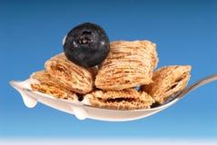 Colher do cereal shredded do trigo com uva-do-monte Fotos de Stock Royalty Free