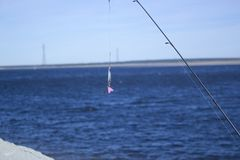 Colher do girador da pesca em um rio fotos de stock royalty free