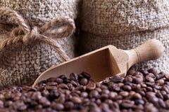 Colher dos feijões de Coffe e detalhe dos sacos Imagens de Stock