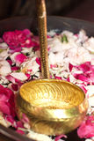 Colher dourada na água com pétalas da flor Fotos de Stock