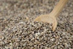 Colher em sementes de cânhamo Imagens de Stock