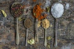 Colheres com especiarias coloridas - close up Fotografia de Stock Royalty Free