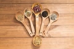 Colheres de madeira com as ervas diferentes para a infusão Fotografia de Stock Royalty Free