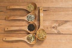 Colheres de madeira com as ervas diferentes para a infusão Foto de Stock Royalty Free
