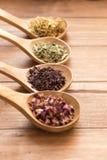 Colheres de madeira com as ervas diferentes para a infusão Imagem de Stock