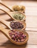 Colheres de madeira com as ervas diferentes para a infusão Imagem de Stock Royalty Free