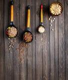 Colheres de madeira pintadas com cereal do whith de Khokhloma imagem de stock royalty free