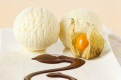 Colheres do gelado da baunilha Foto de Stock Royalty Free