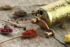 Colheres velhas com especiarias e moedor de pimenta Imagem de Stock Royalty Free