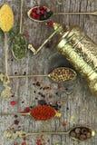 Colheres velhas com especiarias e moedor de pimenta Foto de Stock