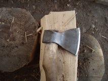 Colhido no inverno uma madeira de vidoeiro e um machado imagem de stock royalty free