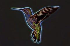 Colibrì al neon Fotografia Stock