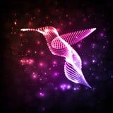 Colibrì astratto al neon Fotografia Stock Libera da Diritti