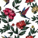 Colibrì con il modello di fiori Immagini Stock Libere da Diritti