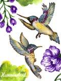 Colibrì di volo dell'illustrazione di gouache dell'acquerello isolato su w illustrazione vettoriale