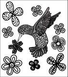 Colibrì e fiore Immagine Stock