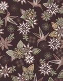 Colibrì e fiori Fotografie Stock