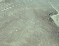 Colibrí, líneas de Nazca Foto de archivo