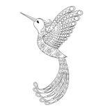 Colibrí tribal de Zentangle, tótem del pájaro de vuelo para Colori adulto libre illustration