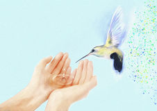 Colibrí y manos Pintura contemporánea Fondo libre illustration