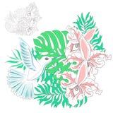Colibríes y orquídeas stock de ilustración