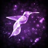 Colibri abstrait au néon Photographie stock
