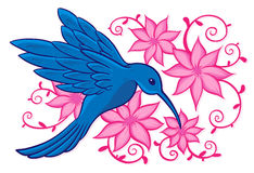 Colibri azul Imagens de Stock