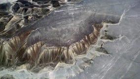 Colibri dans les lignes de Nazca Photos stock
