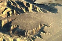 Colibri de Tne, lignes de Nazca, Pérou Photo stock