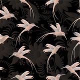 Colibri with flowers. Beautiful seamless pattern.Colibri with flowers Stock Photography