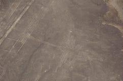 Colibri - la vue aérienne du Nazca raye Image libre de droits