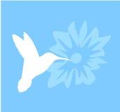 Colibri sur la silhouette de fleur Photographie stock libre de droits