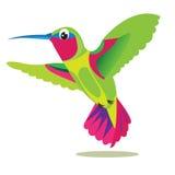 Colibri Vogel Kleiner farbiger Vogel auf einem weißen Hintergrund Die Schlangejagd im Labyrinth Kolibri-Vogel-Bild Lizenzfreies Stockfoto