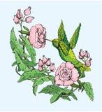 Colibri y flores ilustración del vector