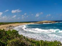 Colibris点海滩瓜德罗普 免版税库存图片