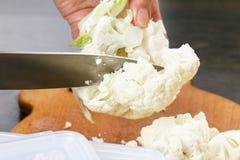 Coliflor del corte del cocinero para cocinar Acción para arriba en la comida del invierno Fotos de archivo