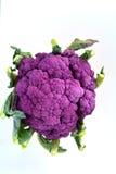 Coliflor púrpura Fotografía de archivo libre de regalías