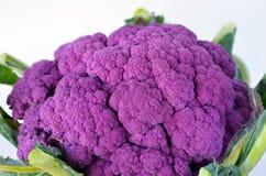 Coliflor púrpura Foto de archivo