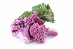 Coliflores púrpuras Foto de archivo libre de regalías