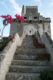 Colimena staircase Stock Photography