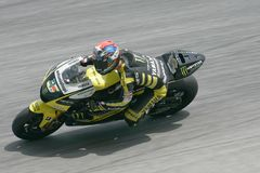 Colin Edwards dos EUA Foto de Stock