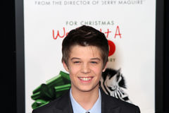 Colin Ford Royalty Free Stock Photos