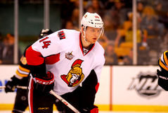 Colin Greening Ottawa Senators Stock Photos