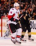 Colin Greening Ottawa Senators Royalty Free Stock Photos