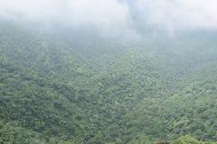 colina Imagenes de archivo