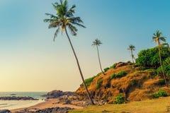Colina con las palmeras del coco en una ubicación tropical del centro turístico fotos de archivo
