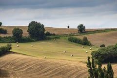 Colina con los campos arados en los Pirineos atlánticos Aquitaine Francia imagen de archivo libre de regalías