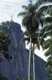 Colina de Corcovado y estatua de Cristo vista del jardín botánico, Foto de archivo
