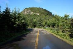 Colina de la baya en camping Imagen de archivo