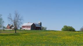 Colina de la granja, del granero y del silo del campo con los dientes de león Foto de archivo